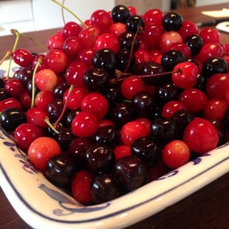 Danske kirsebær. moreller, fugle-kirsebær